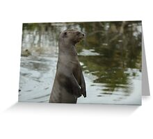 Amazonian river otter Greeting Card