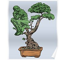 Bonsai Thinking Poster