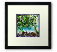 Tropical Trees Framed Print
