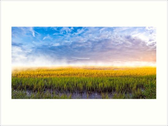 Lazaretto Marsh Panorama - Georgia Coastal Landscape by Mark Tisdale