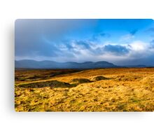 Grass Sea - Landscape on the Scottish Isle of Skye Canvas Print