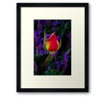 """Individuality"" Framed Print"