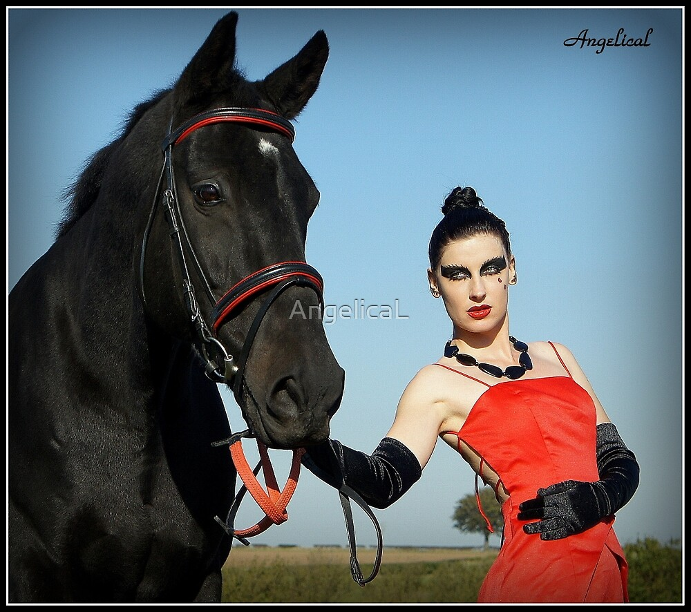 A Girls Best Friend...  Lady in Red  series 2 by AngelicaL