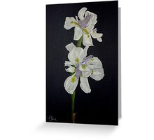 The Midnight Iris Greeting Card