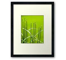 Symmetry in the Grass Framed Print