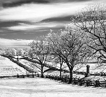 Sunken Road Two by Bowman1