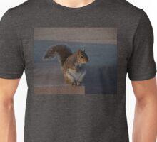 Urban Gray Squirrel Unisex T-Shirt