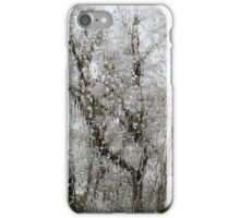 Trees through the Ice iPhone Case/Skin
