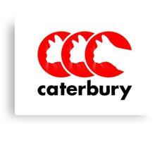 Caterbury Parody Logo Canvas Print