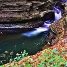 Ithaca's Buttermilk falls V by PJS15204