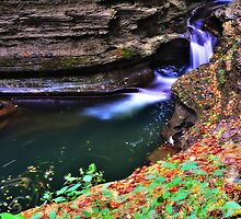 Ithaca's Buttermilk falls V by PJS15204