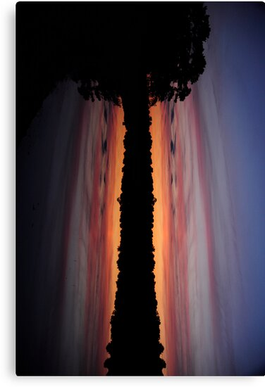 Dusk - A Different Perspective by Paul Gitto