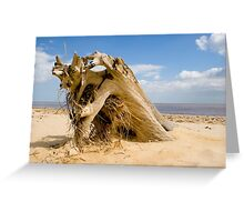 From the sands of time! Greeting Card
