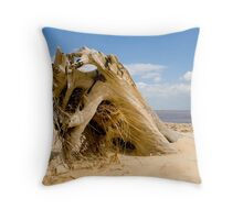 From the sands of time! Throw Pillow