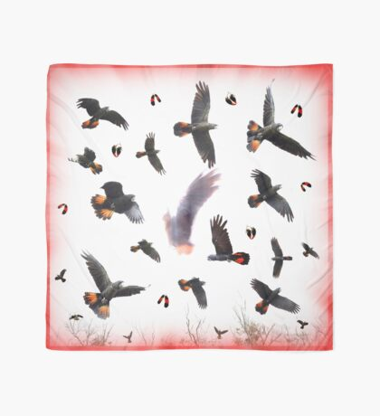 Red Tail Black on White Scarf
