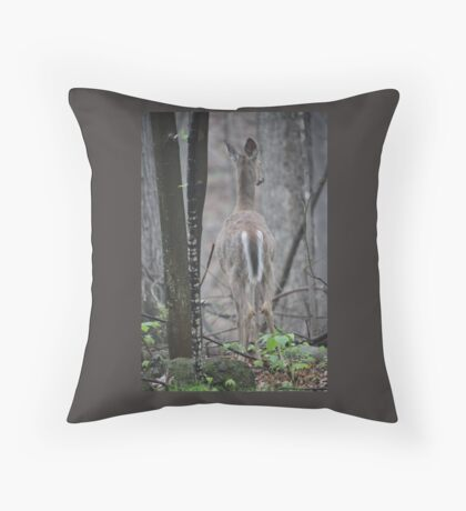 Deer Looks in Ravine Throw Pillow