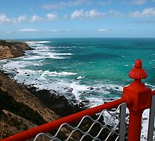 Cape Otway National Park by Kathy Silcock