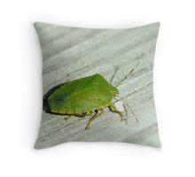101009-113   A GREEN STINKBUG Throw Pillow