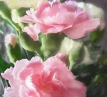 Pink and White Carnations 1 by Christopher Johnson