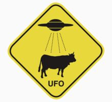 UFO traffic hazard sign Kids Clothes