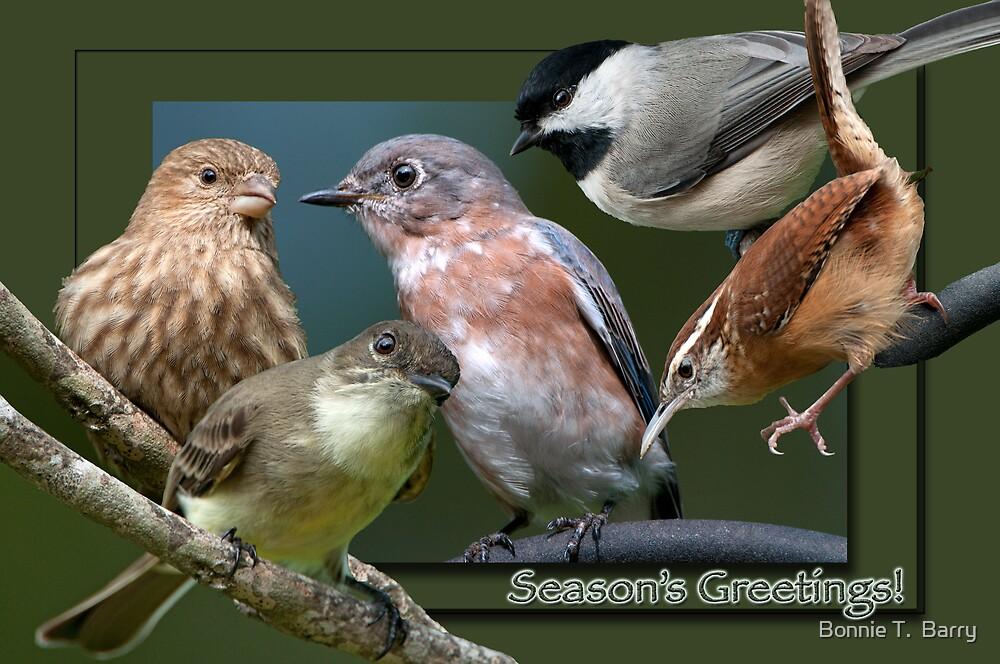 Season's Greetings by Bonnie T.  Barry