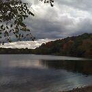 Autumn Pond by gailrush