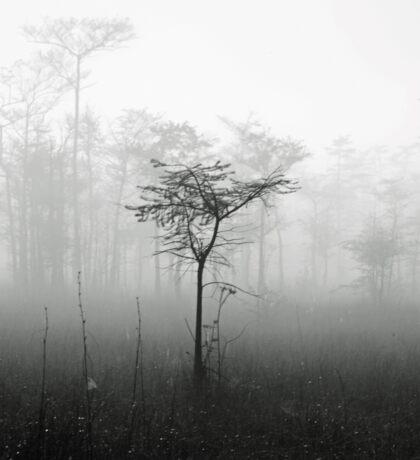 alone in the mist Sticker