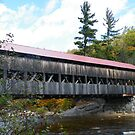 Albany Covered Bridge by terralee