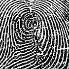 Fingerprint by Bluesrose