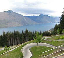 NZ - Queenstown Luge by soulimages