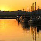 Safe Harbor by Gary Lee Parker