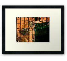 that daily routine Framed Print