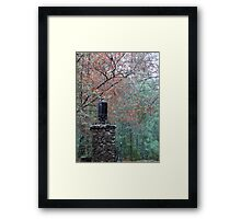 Alfred's Light Framed Print