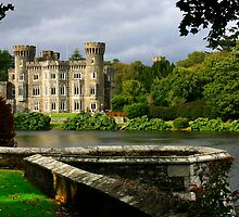 Johnstown Castle by Deb Snelson