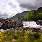 Ashleigh Falls by Deb Snelson