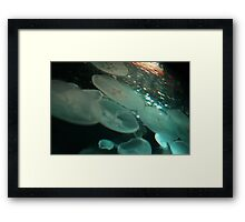 Surrounded By Jelly Framed Print