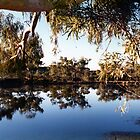 NULLAGINE RIVER, WESTERN AUSTRALIA by Lozzie5243