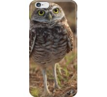 the little owl iPhone Case/Skin