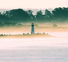 Morning Mist by Micci Shannon