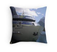 milford journey Throw Pillow