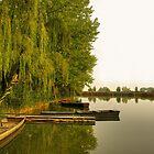 Old rowboats by Béla Török