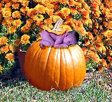 my little pumkin by gaylene goodsell
