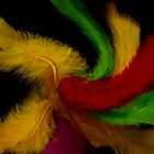 Feathers decorative by pepita selles