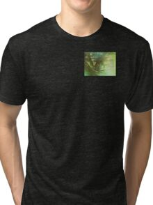 Serenity Prayer Trees, Water, Bridge Tri-blend T-Shirt