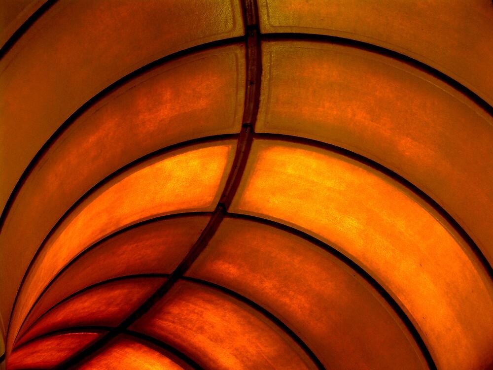 Looking up by Elizabeth McPhee