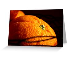 Morning Orange Greeting Card