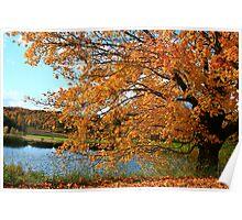 Rural Autumn Beauty Poster