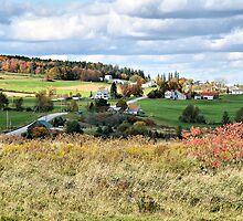 Color On The Hill by Deborah  Benoit