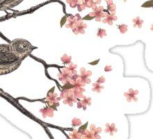 Blossom Bird  Sticker