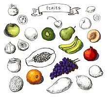 Set of Doodle Fruits - for scrapbook or design - hand drawn by OlgaBerlet